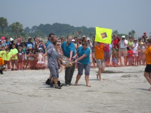Sea Turtle Release Photo 1