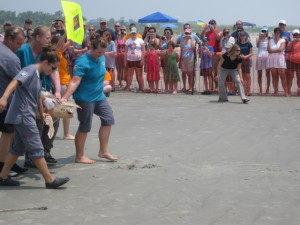 Sea Turtle Release Photo 2