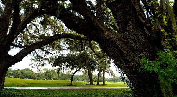 St Simons Island Golf Courses