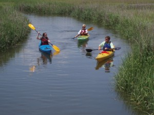 Kayaking Tours on St Simons Island