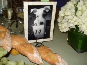 Dog-themed Wedding Reception