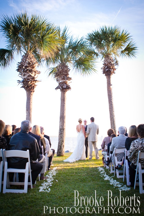 Wedding Palm Trees