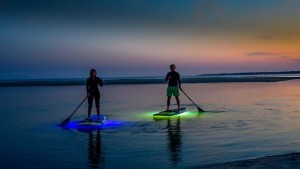 Paddleboarding on St. Simons Island