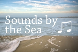 Sounds by the Sea St. Simons Island