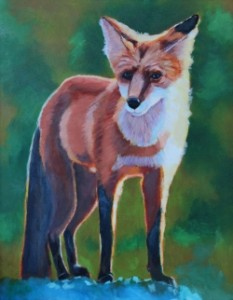 Colors of Life - Red Fox