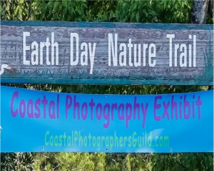 Coastal Photography Exhibit - Earth Day