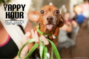 Palm Coast Yappy Hour